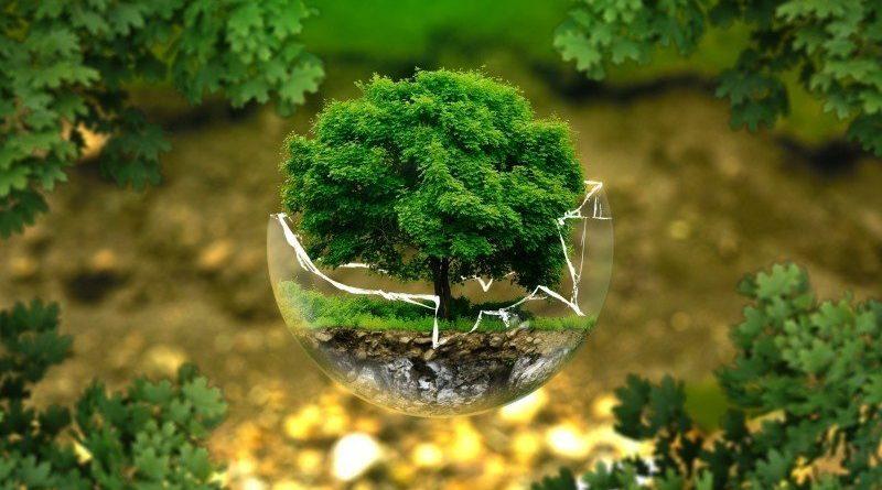 System Zarządzania Środowiskiem ISO18001